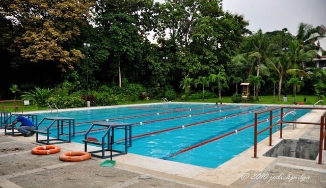 The six lane olympic size swimming pool starmometer - Olympic swimming pool lanes ...