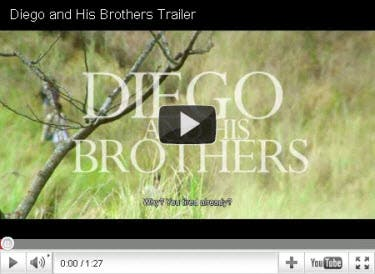 Diego and His Brothers Trailer