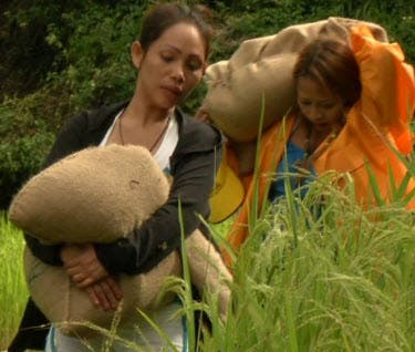 Tonight's episode of 'The Amazing Race Philippines' Stirs
