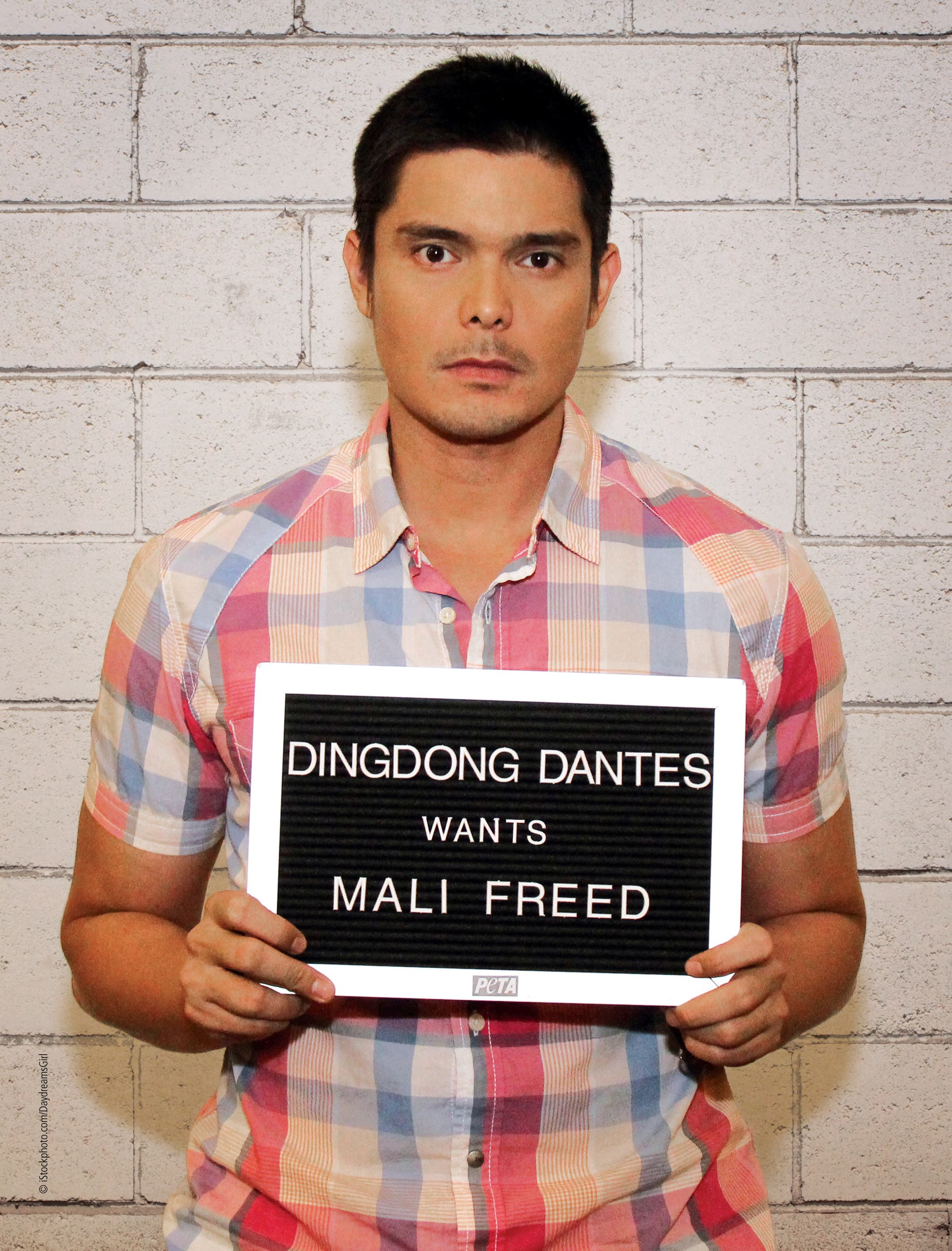Photos: StarStudio's Meet-and-Greet Event with Dingdong ...