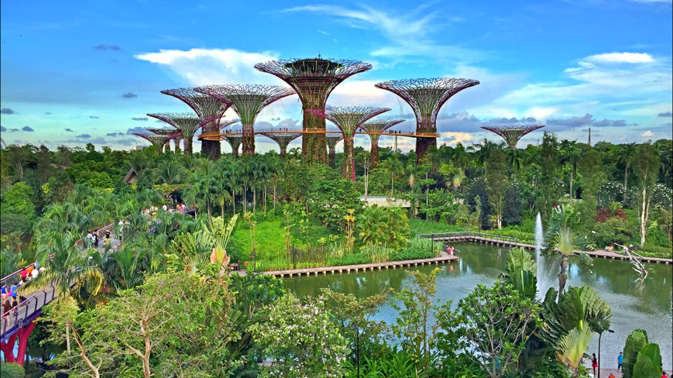 Travel Gardens By The Bay In Singapore Starmometer