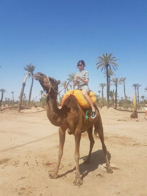 Maine in Morocco